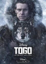 Chú Chó Togo (2019)